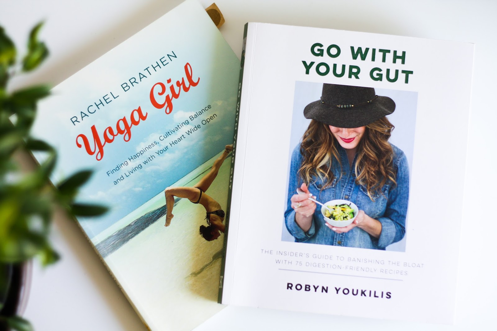 GO WITH YOUR GUT - Robyn Youkilis book review