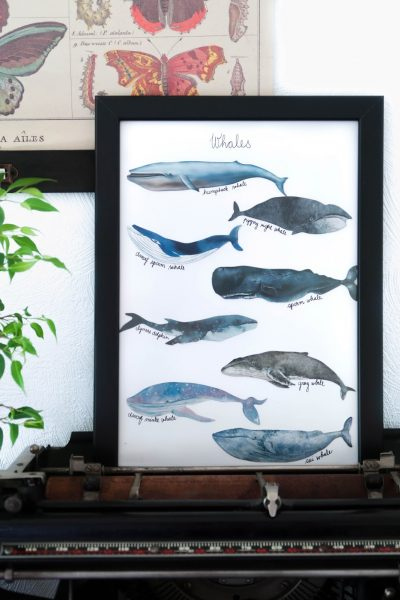 Easy 5 minute whale art for less than £1 (from bookmarks!)