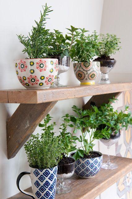 Kitchen herbal garden