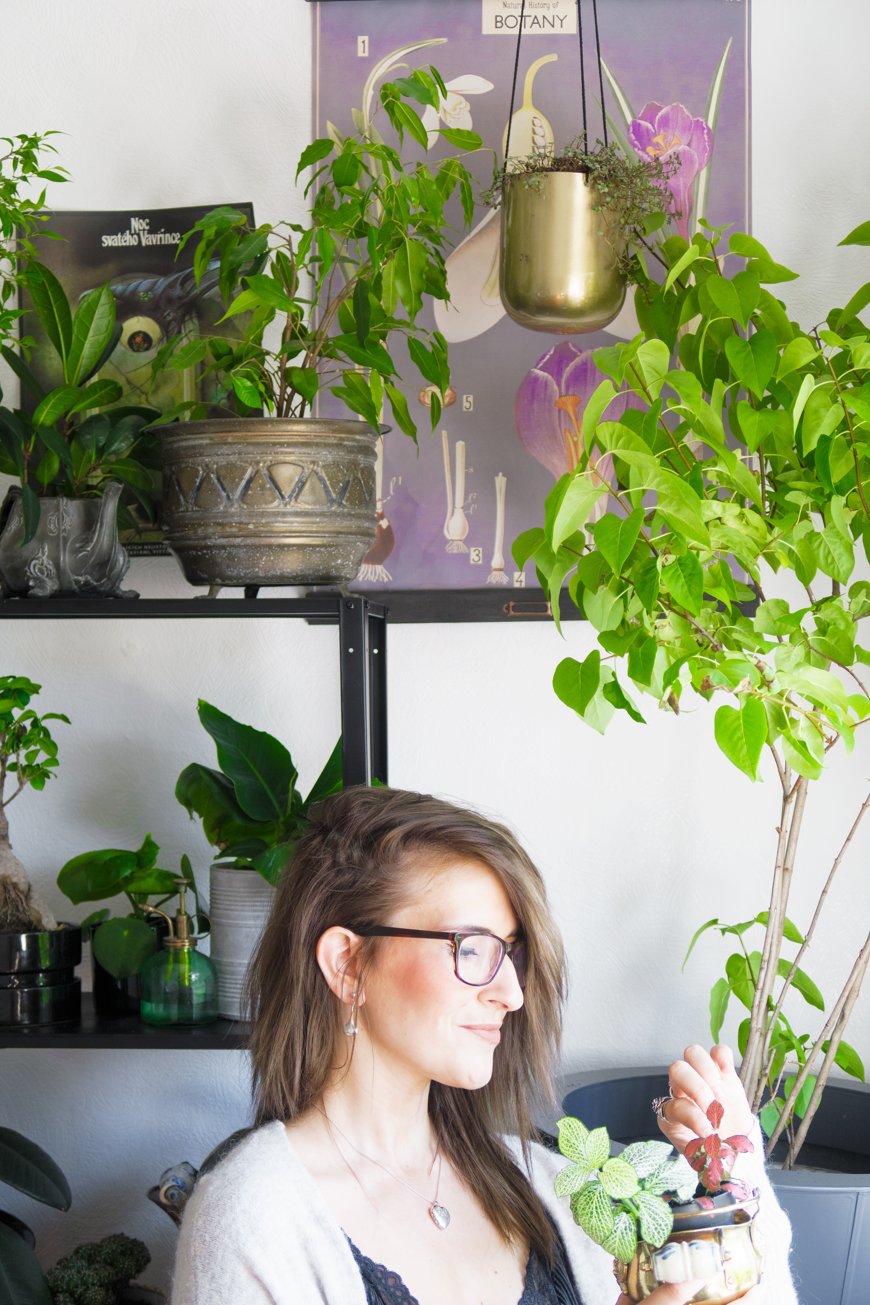 how to create an indoor garden interior jungle