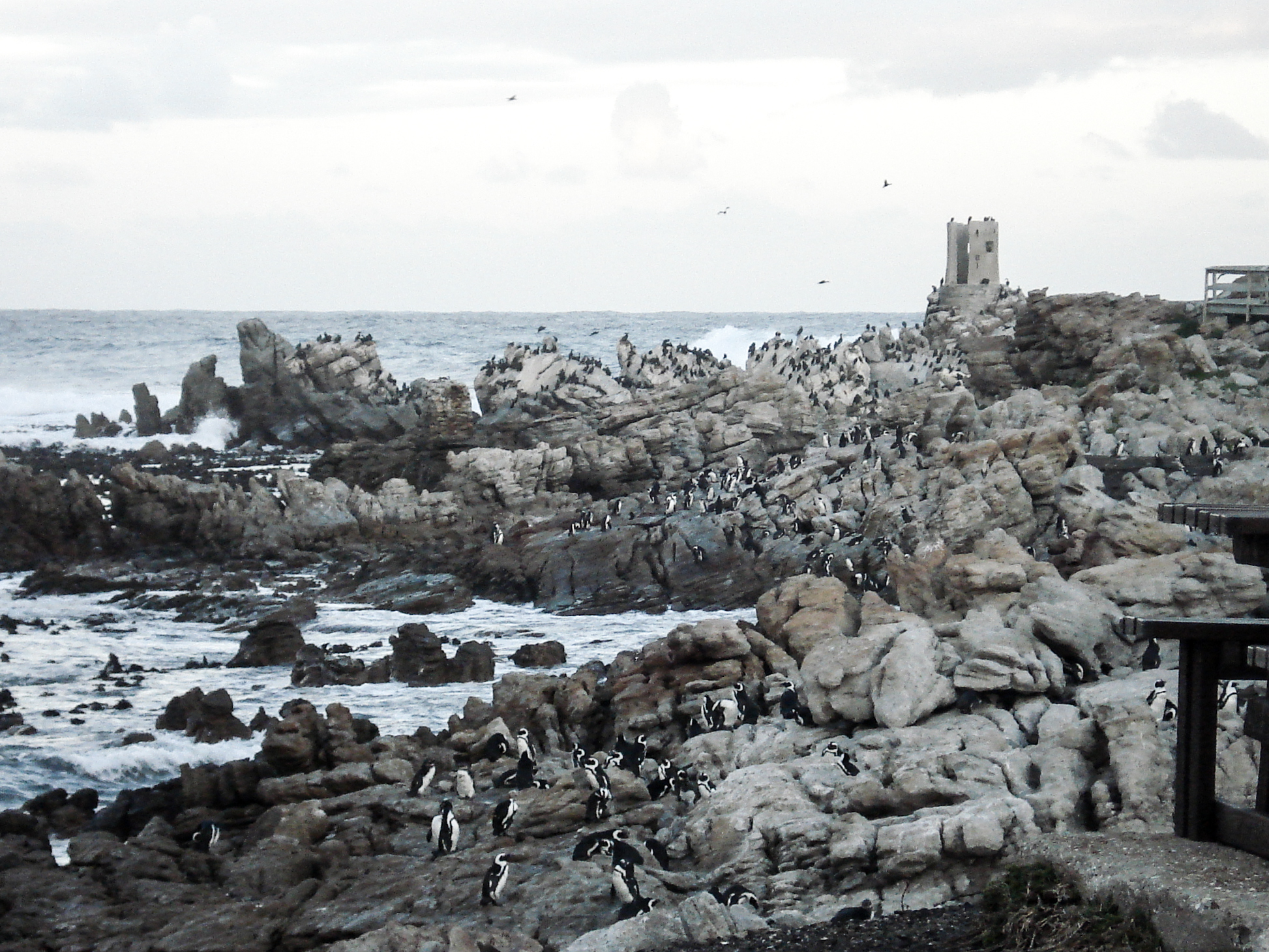 8 reasons why you should move to Cape Town, South Africa
