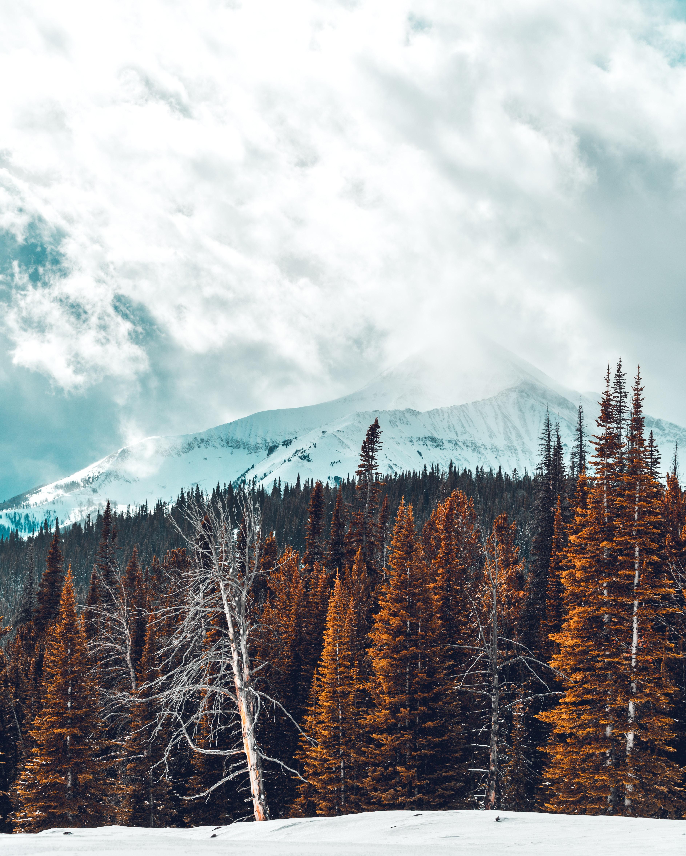 Andorra: Your secret ski destination