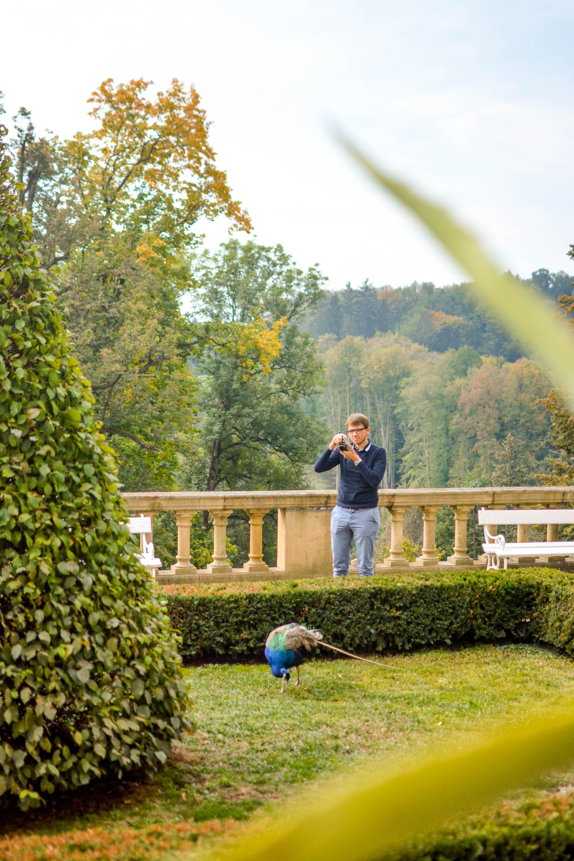 Konopiste Chateau Castle tips for visiting