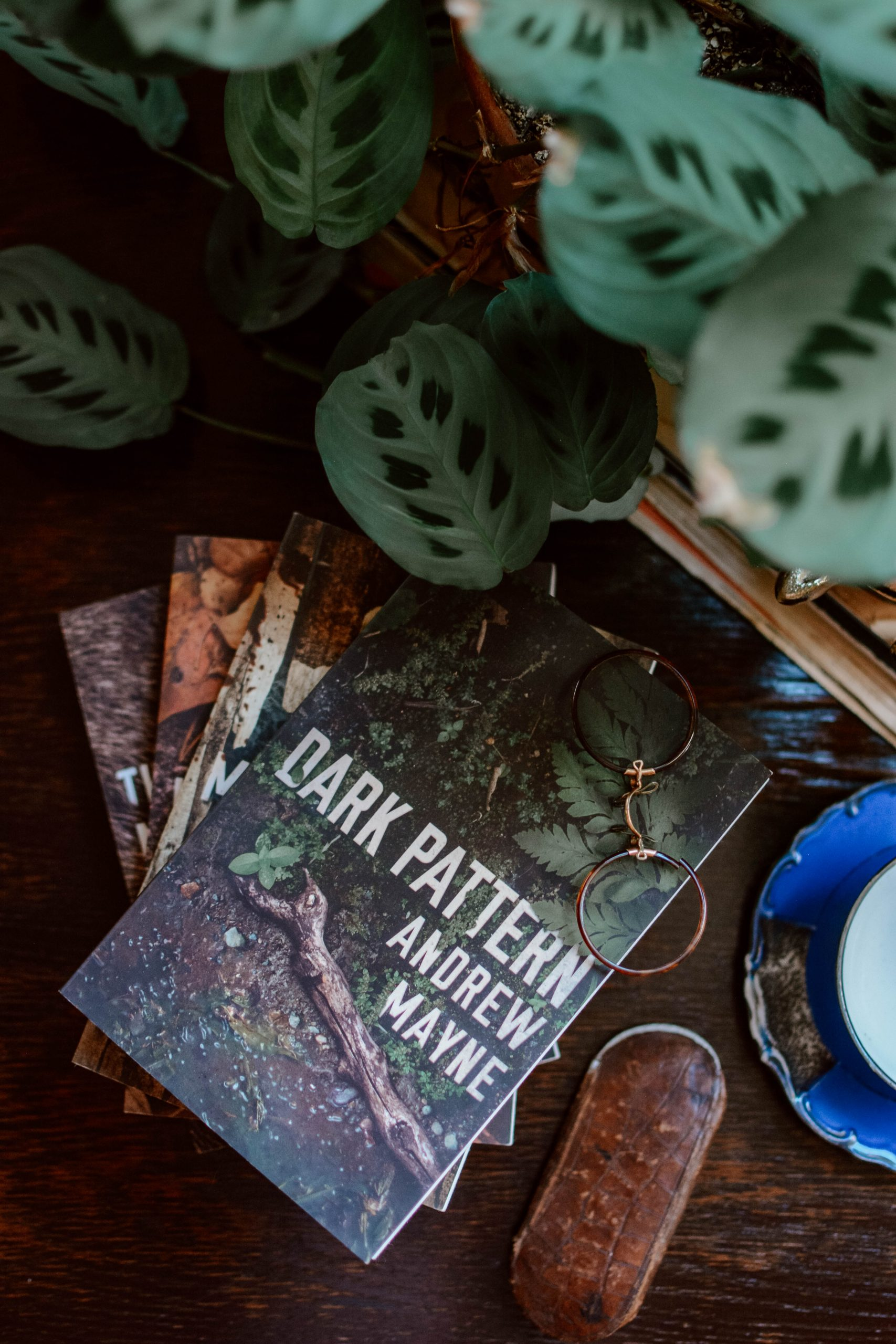 The Naturalist Series by Andrew Mayne review